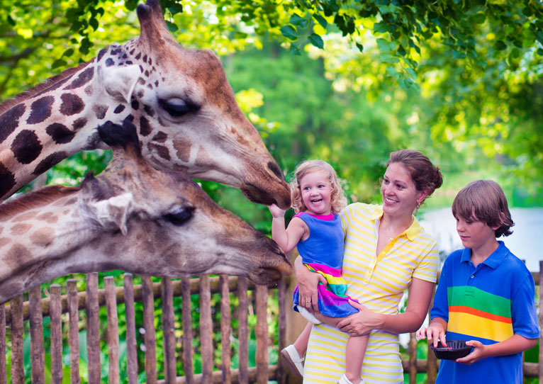 London Zoo at Paddington London Hotel